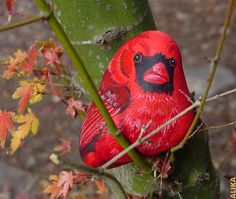 Red cardinal, love it! Pebble Painting, Pebble Art, Stone Painting, Rock Painting, Stone Crafts, Rock Crafts, Pebble Stone, Stone Art, Hand Painted Rocks