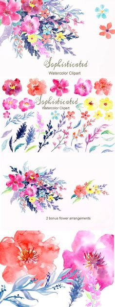 Watercolor Flower Collection Sophisticated