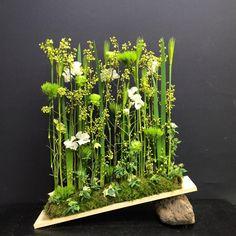 Bd Design, Flora Design, Ikebana, Deco Floral, Arte Floral, Flower Show, Flower Art, Contemporary Flower Arrangements, Hotel Flowers