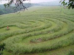 #Labyrinths and mazes have a history that can be traced back over 4000 years. The earliest examples are found carved on rocks in various parts of the world. Labyrinths have been a potent symbol in many cultures for thousands of years but mazes are of more recent origin, evolving from the earlier labyrinths around five hundred years ago.  (caerdroia)