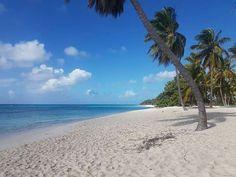Saona Island, Repubblica Dominicana, DOM