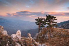 Крымский национальный парк расположился на центральной части Главной гряды Крымских гор, между Ялтой и Алуштой. На территории парка расположились самые высокие вершины Крыма. В горной части национального парка, расположились истоки важнейших рек полуострова. А горные ск National Parks, Mountains, Nature, Travel, Wonderful Places, Paisajes, Naturaleza, Trips, Traveling