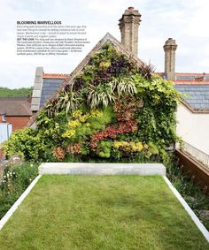green roof, green wall