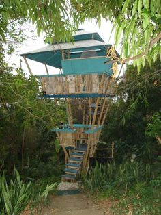 Tropical treehouse in Puerto Rico.