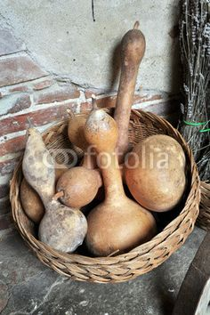 Basket of dried bottle gourds