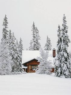 Such an idyllically beautiful wood cabin nestled amongst towering snow capped evergreens. I Love Snow, I Love Winter, Winter Is Coming, Winter Snow, Winter Time, Winter Christmas, Nordic Christmas, Winter Season, Winter Holidays