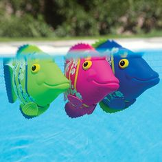 Rainbow Reef Fish - battery-powered swimming fish toys. Kids love to watch them swim! Also fun pool party decor.