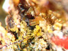 Jahnsite-(NaFeMg) a new mineral species discovered by Tom Loomis of Dakota Matrix Minerals.