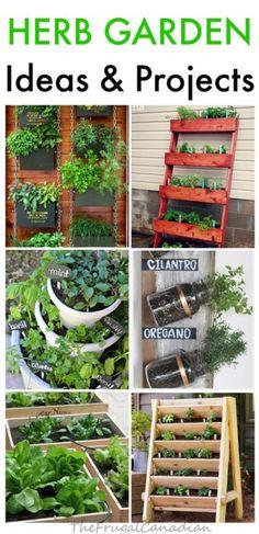 9 DIY Herb Garden Id