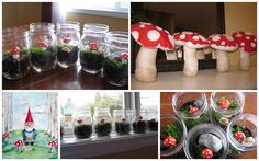 How to make toadstool terrariums