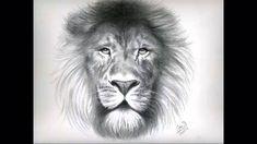 Arte-la importancia del dibujo - YouTube Dibujos A Lapiz, Dibujos A Lpiz, Dibujos Arte, Dibujos Faciles, Dibujos Kawaii, Dibujos De Disney, Dibujos Sencillos, Dibujos Paso A Paso, Dibujos Creativos, Dibujos De Chicas, Dibujos Mandalas. #dibujosalapiz #dibujosarte Lion, Tattoos, Drawings, Google, Disney Drawings, Pencil Drawings, Drawings Of Girls, Cute Drawings, Kawaii Drawings