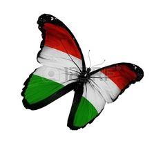 magyar zászló - Google keresés Independence Day, Hungary, Moth, Draw, 15 August, Animals, Image, Tattoos, Google
