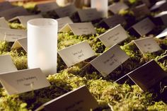 Placecards on moss