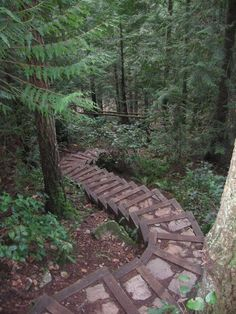 Okay. They are stairs (and this is technically about paths) but they are beautiful, natural, gently curving, and path-like. — at Somewhere On Earth :).