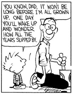 Calvin Y Hobbes, Cartoon Quotes, One Liner, Reality Check, Hobbs, Peanuts, Comic Strips, My Childhood, Newspaper