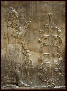 Bajorrelieve asirio, s. 8º a. C. de la época de  Sargon II. Il devient roi de Babylone en prenant la main de Bêl. Génie tenant une fleur de pavot.