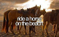 Ride a Horse on the Beach
