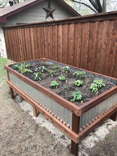 If you want to protect your plants or just improve the look of your garden, elevated garden beds can be a very good investment. #elevatedgardenbeds #raisedgardenbed #raisedgarden #gardenbed