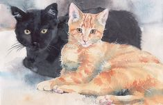 Black and red cats, watercolor cat portrait