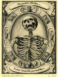 A Skeleton Set In An Oval Frame With Hourglasses And Skulls Bones From Series Of Six Engravings Memento Mori Print Made By Alexander Mai