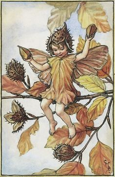 "Vintage print 'The Beech nut Fairy' by Cicely Mary Barker from ""The Book of the Flower Fairies""; Poem and Pictures by Cicely Mary Barker, Published by Blackie & Son Limited, London [Flower Fairies - Autumn] Cicely Mary Barker, Flower Fairies, Autumn Fairy, Fairy Pictures, Vintage Fairies, Fantasy Illustration, Illustration Flower, Fairy Art, Magical Creatures"