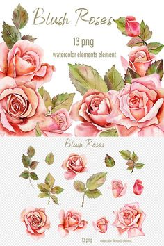 Graphic Illustration, Illustrations, Rose Clipart, Craft Stickers, Scene Creator, Pattern And Decoration, Vintage Wall Art, Journal Cards, Watercolor Flowers