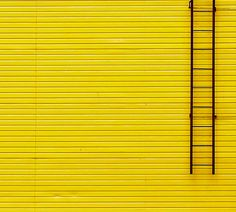 Yellow Wall and Ladder by Gleb Potapenko - Gelb Yellow Brick Road, Yellow Walls, Mellow Yellow, Black N Yellow, Cat Tiger, Pop Art, Picsart Background, Aesthetic Colors, Aesthetic Yellow