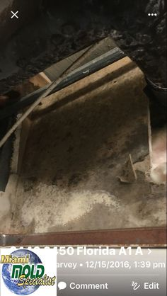 """Mold Remediation Miami Beach  We provide a simple, no-nonsense approach to #fixing #mold #problems that we like to call """"Miami Mold Specialists."""" Call Us Now 8305-763-8070 Guaranteed LOWER price than the competitor! http://www.miamimoldspecialists.com/ http://www.miamimoldspecialist.com/"""