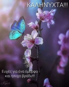 Good Night, Flowers, Papillons, Nighty Night, Good Night Wishes