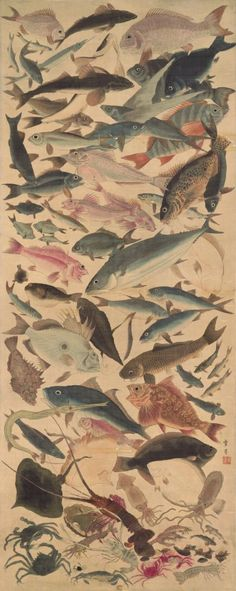 """Eighty-eight fish"" Utagawa Yoshikazu [f. 1848-1863] Hanging scroll"