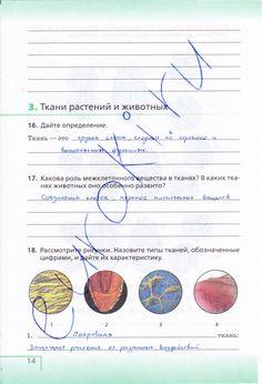 Гдз по биологическому краеведению 7 класс рабочая тетрадь дмитриева сосновская