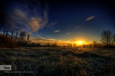 Frosty morning by Family-Man. Please Like http://fb.me/go4photos and Follow @go4fotos Thank You. :-)