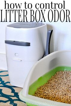 No more litter box odor with this simple system! #pets #cats #sp