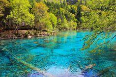 Atolls, lacs de montagne, trous d'eau... Découvrez 20 sites exceptionnels et rares, baignés d'eaux cristallines.