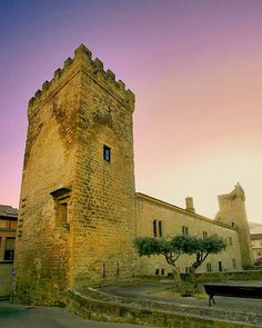 Palacio del Príncipe de Viana
