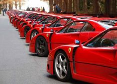 Ferrari Meet in Japan. (Pics) - - Porsche Forum and Luxury Car Resource Ferrari F40, Ferrari 2017, Lamborghini, Super Sport Cars, Super Cars, Chasing Cars, Top Cars, Fast Cars, Car Pictures
