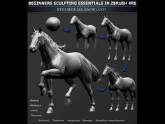 Learn essential Zbrush sculpting techniques with 3D character artist Michael Knowland. With nearly 14 hours of video, we cover crucial features, such as brushes, lighting and materials in order to make a highly detailed Horse sculpt that is built around real-world superficial anatomy and proportions. This video is designed for total beginners who have no prior knowledge of Zbrush, and Michael will reveal each feature utilized in the creation process, some of which are unique to the latest…