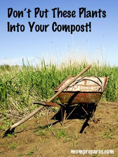 Types of plants to keep out of your compost pile. If you need someone to take care of your garden or if you want to be the one, please contact with us. Visit grandma4help.com #gardening #tips #nanny