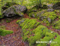 Sierra de Urbasa, Navarra, Spain