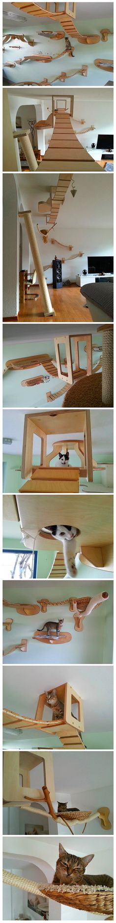 German design company Goldtatze (Gold Paw) specializes in transforming ordinary rooms into overhead playgrounds for cats. By adding wooden bridges, hammocks, scratching posts, and even little dens for cats to hide out in, each site-specific installation offers playful felines plenty of room for adventurous activity and their much needed catnaps. Heidi Heneks Siercks!!! Looks like something  Ashton could use!