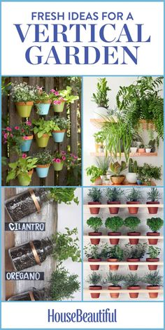Vertical Gardens Running out of plant space in your backyard? Try these fresh ideas for a vertical garden! - Proof that plants don't need to be stuck in the ground. Balcony Garden, Indoor Garden, Indoor Plants, Pot Plants, Organic Gardening, Gardening Tips, Gardening Magazines, Vegetable Gardening, Hanging Pots