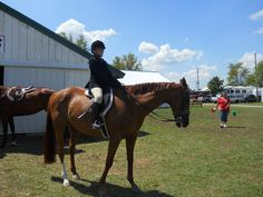 Granddaughter at the fair horse show.