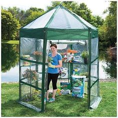 Stafford Pop Up Quick Assembly Walk-In Greenhouse