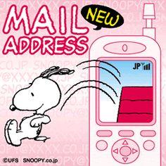 New Mail Address