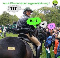 http://www.parkschuetzer.de/assets/statements/150385/original/Pferdemeinung.jpg?1361262963