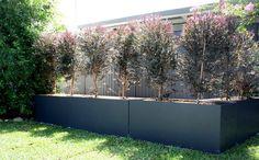 Bamboo Deco: 40 idee per un giardino decorato con bambù