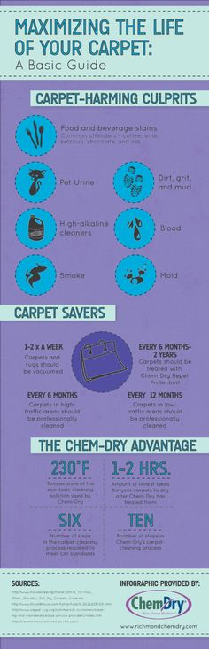 a basic guide to maximizing the life of your carpet