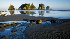 Olympic National Park | Olympic_National_Park_beach_beauty_wallpaper_1366x768.jpg
