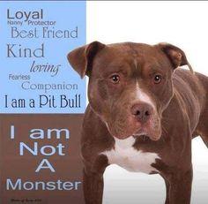Pitties you Rock your always lovers See More at fb.me/pitloversclub #Pitbull #PitBullLove #PitBullMom #PitBully #PitBullLife #PitBullMix #PitBulls #PitBullPride #PitBullPuppy #PitBullLover #PitBullMommy #PitBullsOfficial #PitBullProblems #PitBullFamily #Dog #Dogs #PitBullsFan #pitbullofig #pitbullsnuggles #pitbullstrong #pitbullofficial #pitbullsoflove #pitbullrescue #pitbullsmile #pitbulldog #pitbullblue #pitbullswifey #pitbullife #pitbullsfans #pitbullsallday