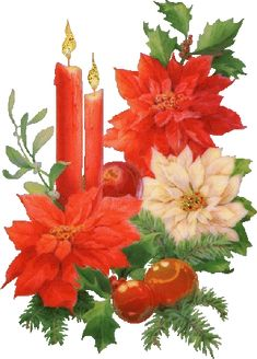 Mesothelima: 73 Happy Merry Christmas 2019 Wishes and Images Christmas Poinsettia, Christmas Scenes, Noel Christmas, Christmas Candles, Christmas Pictures, Christmas Crafts, Christmas Decorations, Christmas Ornaments, Christmas 2019